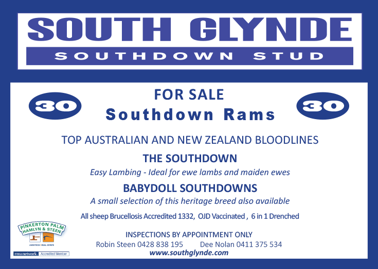 South Glynde Sale